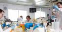 DiaMetra Italia - reactivi imunodiagnostic si kituri testare